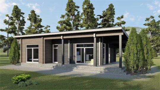 Log house #099